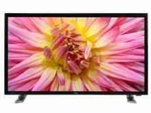 DTL CN243BT 24 inch LED Full HD TV